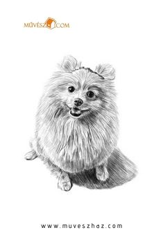 Dog pencil drawing art - free image on pixabay Dog Pencil Drawing, Pencil Drawings, Art Drawings, Drawing Art, Pet Pug, Puppy Costume, Small Dog Clothes, Summer Dog, Drawing Faces