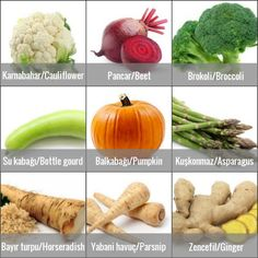Vegetables (Sebzeler)1 Turkish Lessons, Learn Turkish Language, Istanbul, Herbalism, Diet, Vegetables, Turkish Language, Languages, Learn Turkish