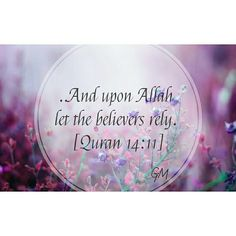 ...And upon Allah let the believers rely. [Quran 14:11]