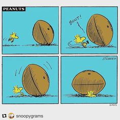 ウッドストックはラグビーボールに潰されているな。>_<