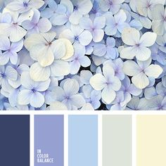 Color Palette No. 2235