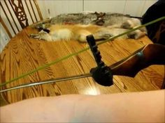 How to Measure a Bowstring