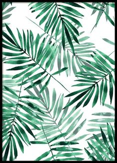 Green Tropical Plants Fabric - Green Palm Leaves By Gribanessa - Watercolor Fern Tropical Jungle Cotton Fabric By The Yard With Spoonflower Watercolor Wallpaper Iphone, Palm Wallpaper, Wallpaper Art, Iphone Wallpaper, Tropical Leaves, Tropical Plants, Retro Kunst, Orange Aesthetic, Watercolor Leaves