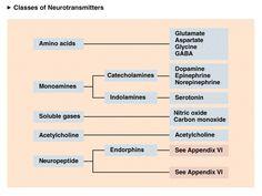 neurotransmitters - Google Search