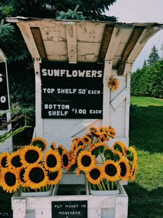 181 best flower aesthetic images in 2019 Flower Aesthetic, Summer Aesthetic, Blue Aesthetic, Aesthetic Fashion, Amy Pond Aesthetic, No Rain, Happy Vibes, Happy Colors, Mellow Yellow