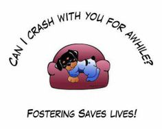 foster animal flyers - Google Search
