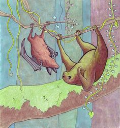 Sloth and Bat Hanging Out by Caitchison