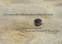 Seashells Quotes Barca Fontanacountryinn Com