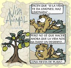 Vida Animal · Si la vida te da limones...