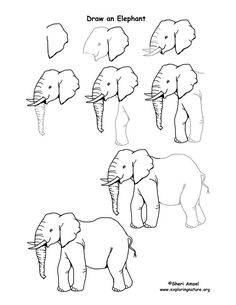 elephant-drawing-7119.jpg
