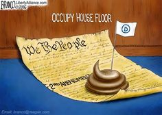 Another Democrat 'Movement'