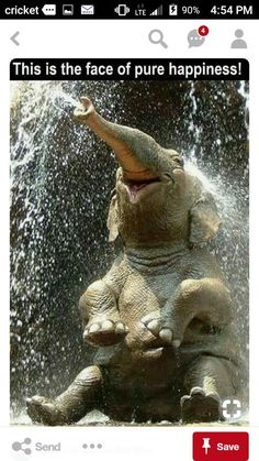Me in a shower after a loooooong day at work