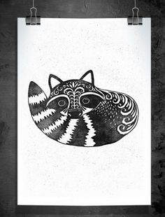 Raccoon - Illustration