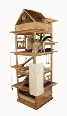 360 Cat House Indoor Outdoor Ideas Cat Diy Cat House Cat Furniture