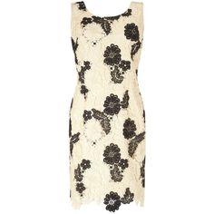 Jacques Vert Petite Mono Lace Dress, Cream/Black (€70) ❤ liked on Polyvore featuring dresses, petite, lace dress, floral midi dress, petite dresses, floral maxi dresses and midi dress