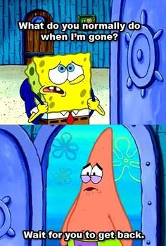 Spongebob is anime and I'm Patrick. (cause they give anime marathons every Saturday night so I gotta wait a week)