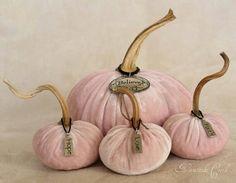 Love velvet pumpkins!