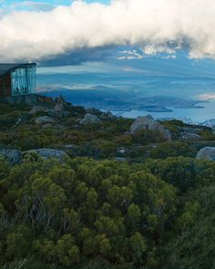 NEWS 2.5.2016.....Tasmania, Procida, and a Paris Suburb: 5 Unexpected Places to Travel This Summer