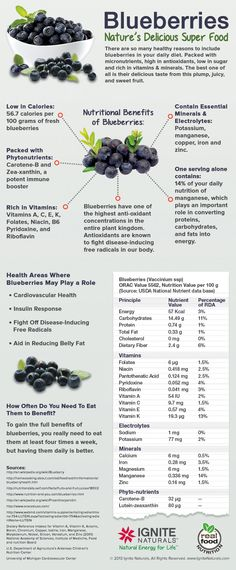 I love blueberries!  Nutrition and antioxidant packed and delicious too.