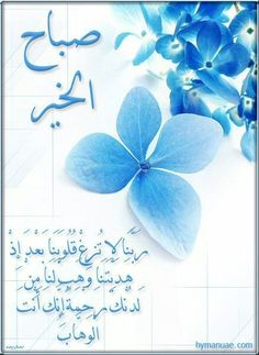 141 best images on pinterest in 2018 buen dia good arabic quotes scrap google search good morning m4hsunfo
