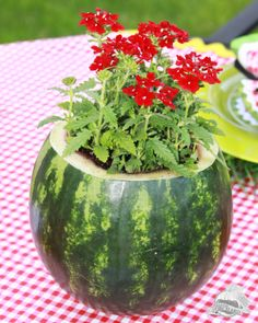 Watermelon Flower Pot. Isn't this pretty? This would work for your cookouts, parties or any gathering you're having!