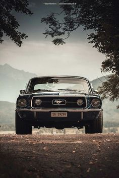 Gorgeous Ford Mustang http://www.moderndecor8.com/