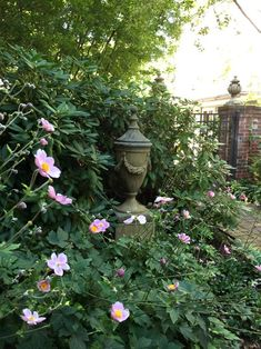 Traditional Interior, Traditional House, Traditional Design, Old Southern Homes, Southern Mansions, Beautiful Interiors, Beautiful Homes, Lilly Garden, Old Town Alexandria