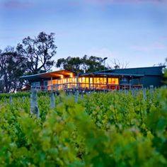 The Lane Vineyard