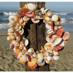 Natural Tropical Shell Wreath