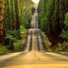 Seguir el camino.