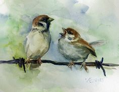 Birds watercolor painting original Sparrows by VerbruggeWatercolor, $68.00
