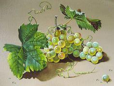 Коллекция картинок: И снова фруктово-ягодное!