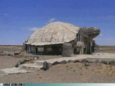 The Turtle House || #LittlePassports #Quirky places and #spaces