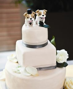 Dog Cake Toppers | Sweetwater Portraits By Julie Melton | blog.theknot.com