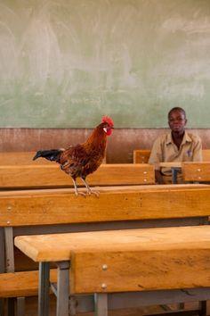 Burkina Faso classroom. Photograph: Anne-Charlotte Marcadé.