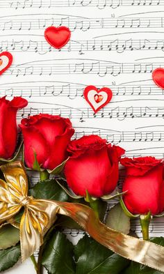 !!! Red Roses !!!