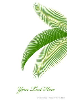 Royalty Free Vector Art - Palm Tree Leaves for Graphic Design, Web and More