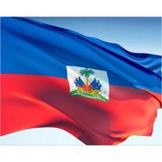Flag and Coat of Arms – Embassy of Haiti Haiti News, Photos Du, Stock Photos, Haiti Flag, Port Au Prince, Thinking Day, Coat Of Arms, Culture, Tatoo