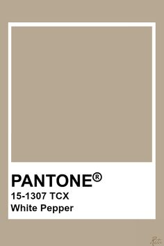 Pantone White Pepper