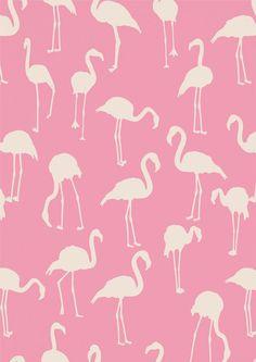 flamingo pattern | ban.do