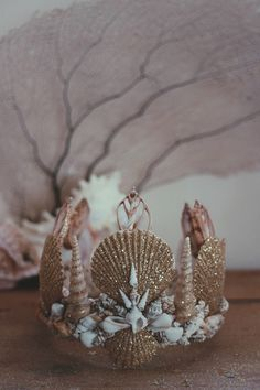 ☾ ☆☽ The best selling Casting Spells Mermaid Crown now comes in gold! Dusted with sparkling gold shimmer and soft hues of cream, white and brown. Handmade in California with real seashells attached to Mermaid Headpiece, Mermaid Braid, Mermaid Shell, Mermaid Crown, Mermaid Crafts, Seashell Crafts, Mermaid Diy, No Ordinary Girl, Shell Crowns