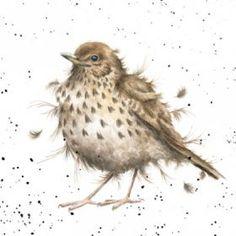 CS056 - Songbird | Wrendale Designs