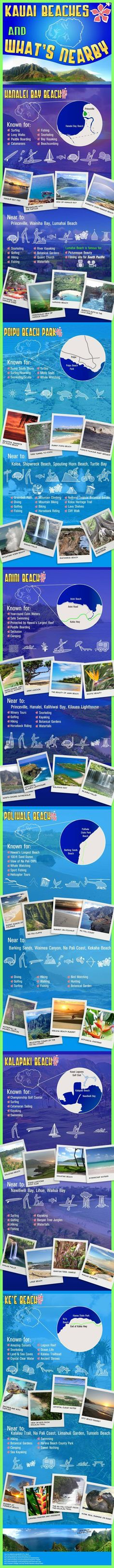 Spectacular Kauai Beaches - Pictures Worth a Thousand Words [Infographic]