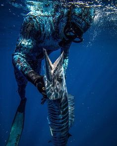 Spearfishing - Recherche sur Twitter