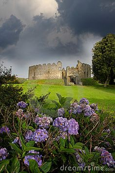 Restormel Castle with flowers, Lostwithiel Cornwall England