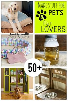Check out the 50+ DIY projects to make for your pets!   home decor   dogs and cats