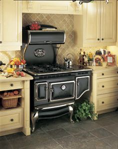 I love these vintage reproduction kitchen appliances! You get the look and feel of the 1920's but with all the modern conveniences.