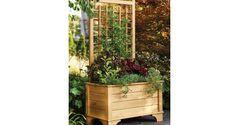 Planter Trellis free download of plans