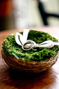 This is cute, I like the moss & the bird's nest!