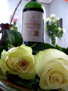Wine and Roses   YELLOW ROSES